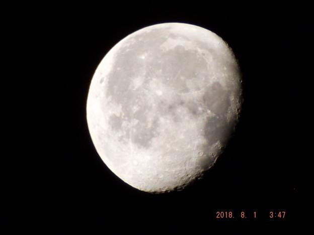 2018/08/01(水)のお月様