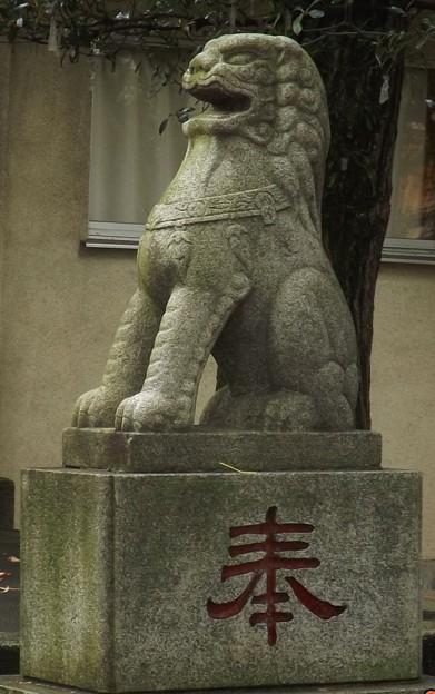 2018/09/30(日)・志演尊空神社・右の狛犬様