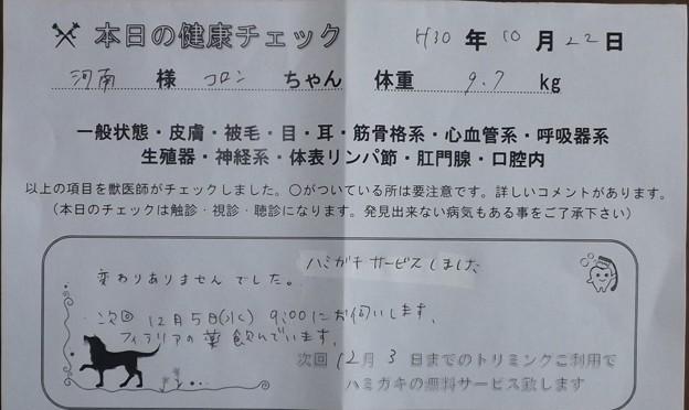 2018/10/22(月)・本日の健康チェック
