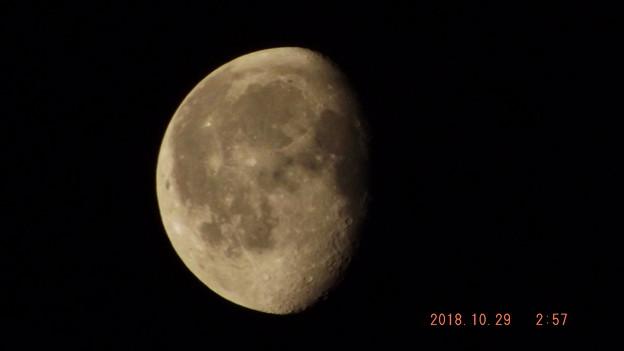 2018/10/29(月)のお月様