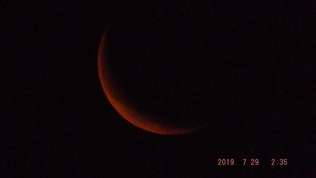 2019/07/29(月)のお月様