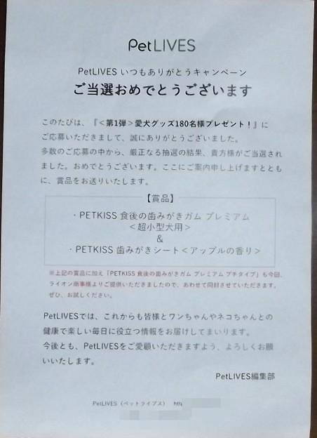 2019/07/31(水)・当選通知