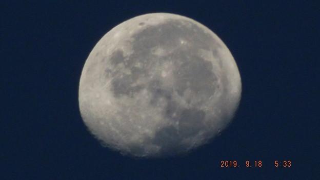 2019/09/18(水)のお月様