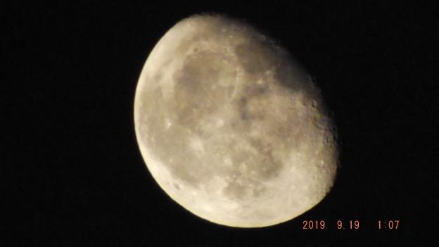 2019/09/19(木)のお月様