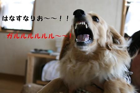 怒る!摩耶さん!!