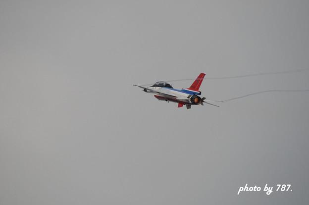 岐阜基地航空祭2008_023L