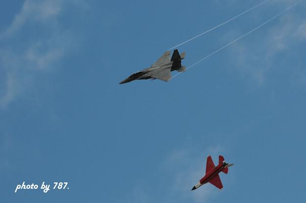 岐阜基地航空祭2008_021L