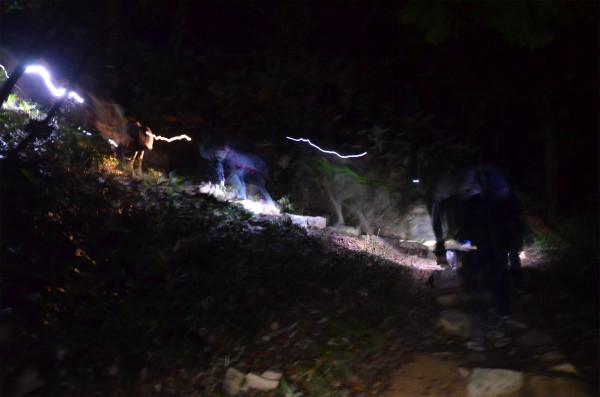 真っ暗な山道を懐中電灯の明かりを頼りに登る