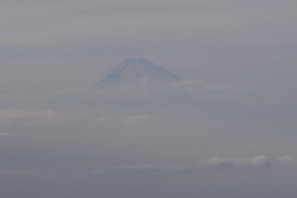 雲から頭を出した富士山が見えました。