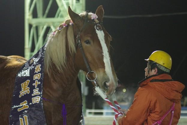 ミスタカシマ(黒ユリ賞表彰式)
