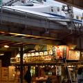 写真: 新幹線とお魚