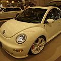 New Beetle(2)