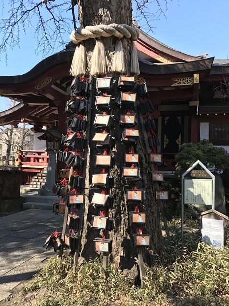 素戔嗚神社