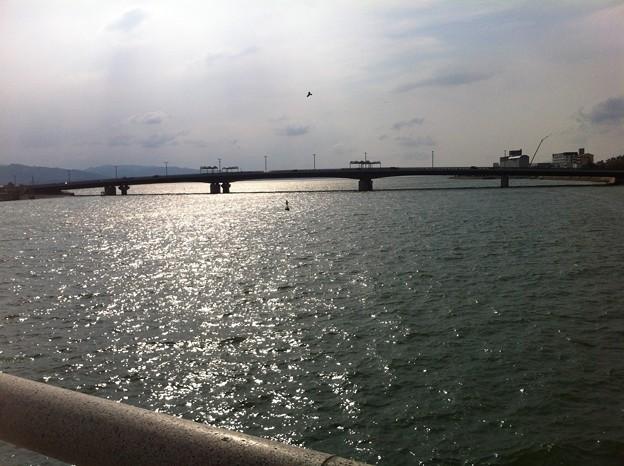 Photos: 宍道湖