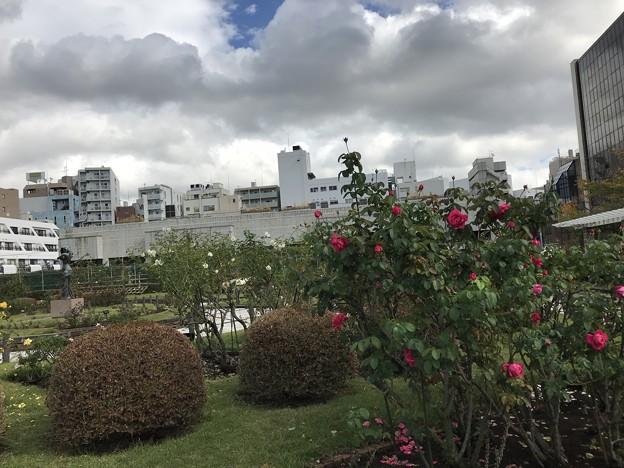 Photos: 本郷給水所公苑
