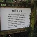 Photos: 柳生