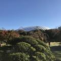 Photos: 小石川後楽園000