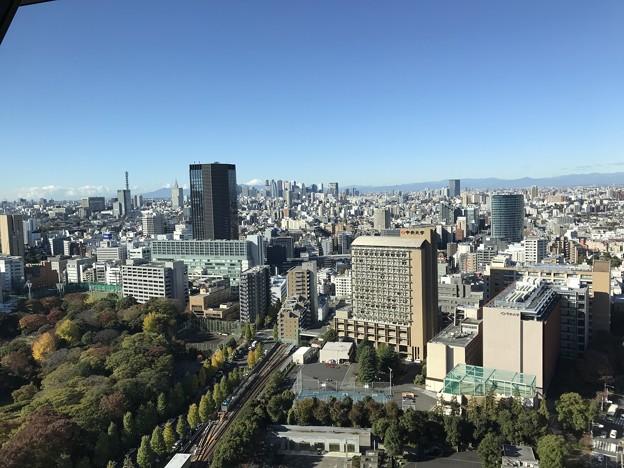文京シビックセンター007