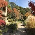 目白庭園3