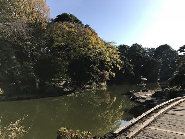 新宿御苑 010