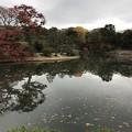 写真: 六義園 011