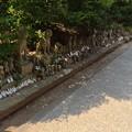 Photos: 城山稲荷神社5