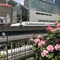Photos: 東京交通会館