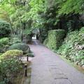 Photos: 正覚寺