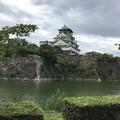 Photos: 大阪城
