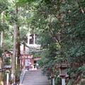 Photos: 狭井神社