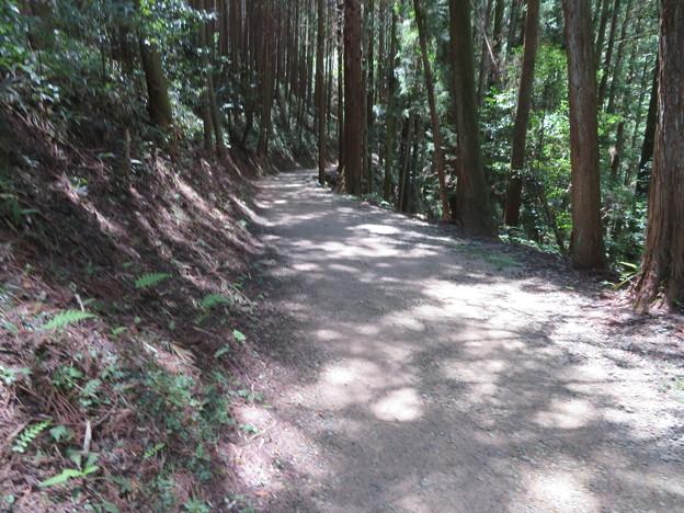 天石立神社