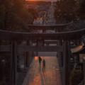 写真: 光の道♪