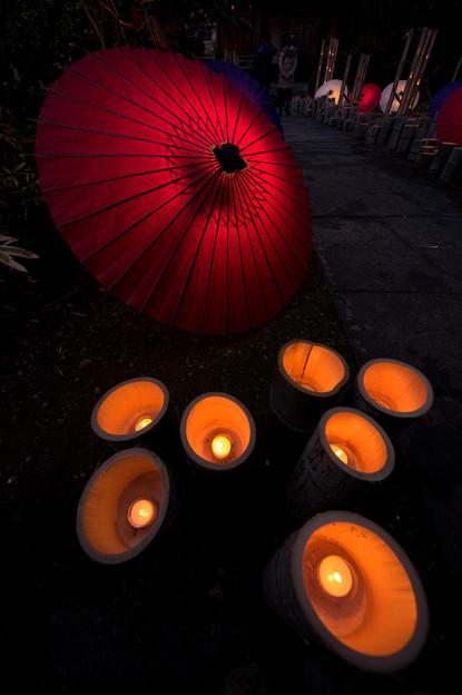 写真: 山鹿灯篭浪漫:百華百彩♪2