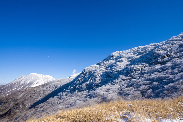 くじゅう雪景色♪
