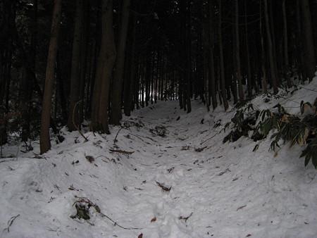 夜明け前の登山道