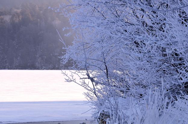 写真: 阿寒湖の冬