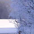 阿寒湖の冬
