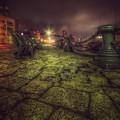 写真: 夜の渡船場で