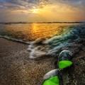 Photos: 今日も浜あそび♪