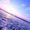 写真: 波と花いちもんめ♪