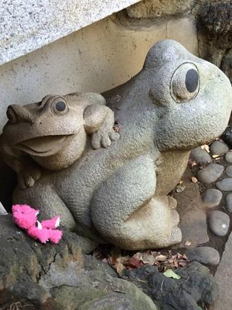 品川神社のカエル