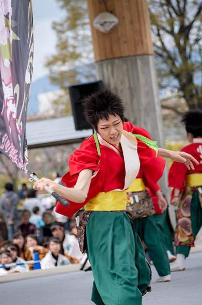 京都さくらよさこい2016 バサラ風流倭尽心舞