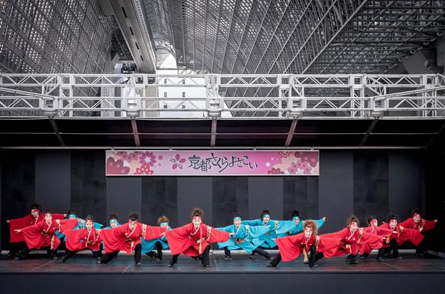 京都さくらよさこい2016 金澤こまち