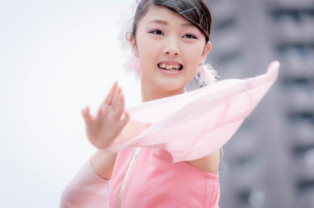どまつり夜桜 in 岡崎2016 よさこいチーム心結~こころ~