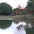 公園で見た風景