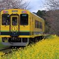 写真: いすみ鉄道 総元駅
