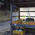 写真: 野菜販売所