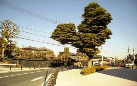 旧東海道・境木立場跡
