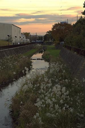 阿久和川の夕景