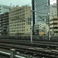 Photos: ニャゴヤ